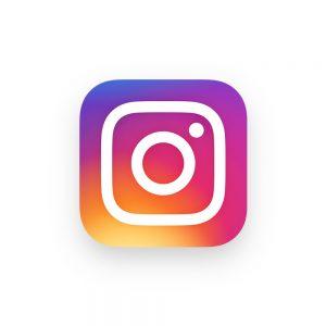 flex mse instagram