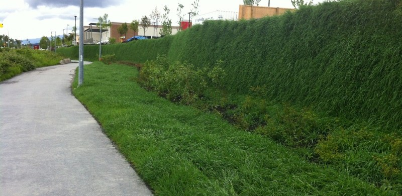 Green Retaining Wall With The Flex Mse Vegetated Wall System