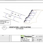 Live Planting - Flex MSE