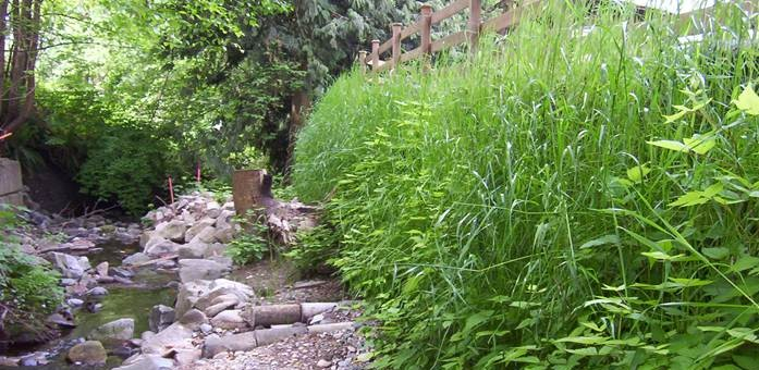 Stream bank repair and property reclamation