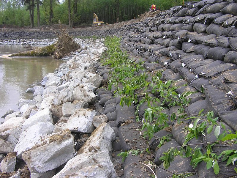 Major River Bank Stabilization - Brush Layering between bags
